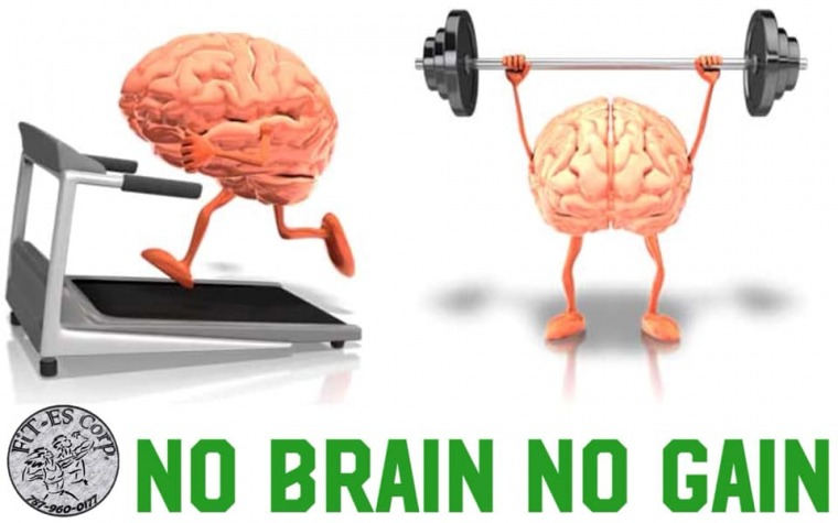 'No Brain, No Gain'